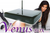 Venus Box  IPTV XXL Erotic